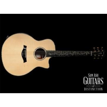 Taylor Guitars PS16CE Grand Symphony Acoustic Electric Guitar